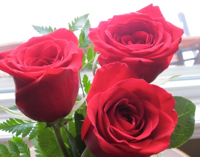 Valentine_5110