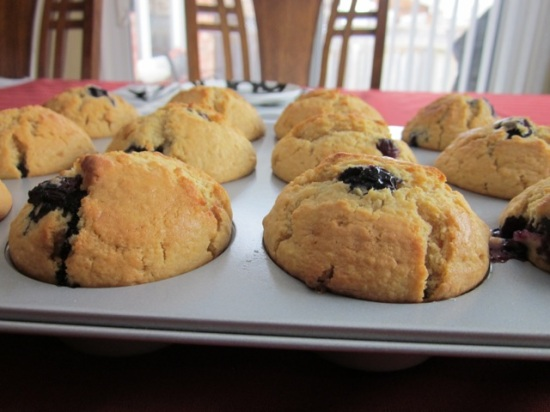 Blueberry muffins_5169
