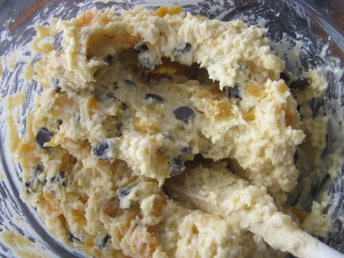 Apricot Choc Chip & Coconut Cake_7711