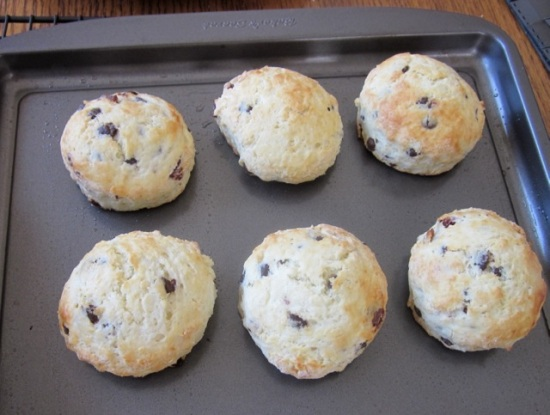Cranberry & Chocolate Scones_8900_2