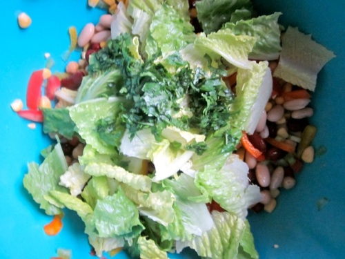 Bean and Vegetable Salad_4038
