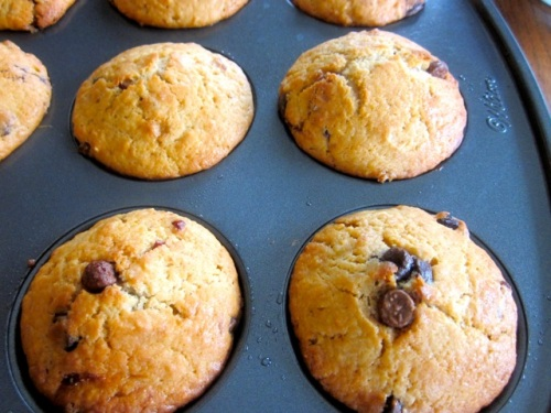 Cranberry Chocolate Chip Muffins_2041