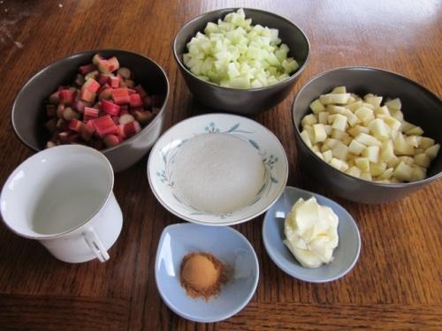 Rhubarb Apple Pear Pie myfavouritepastime.com_6525