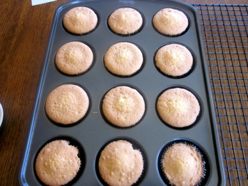 Coconut Topped Cupcakes myfavouritepastime.com_6765