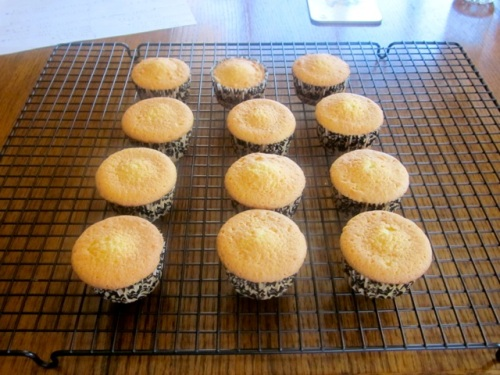 Coconut Topped Cupcakes myfavouritepastime.com_6767