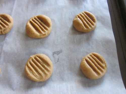Golden Honey Biscuits myfavouritepastime.com_6429