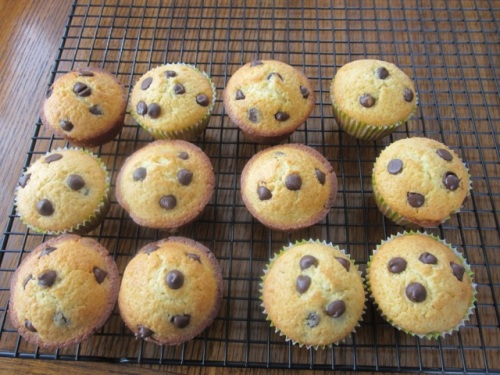 Chocolate Chip Muffins myfavouritepastime.com_8151_2