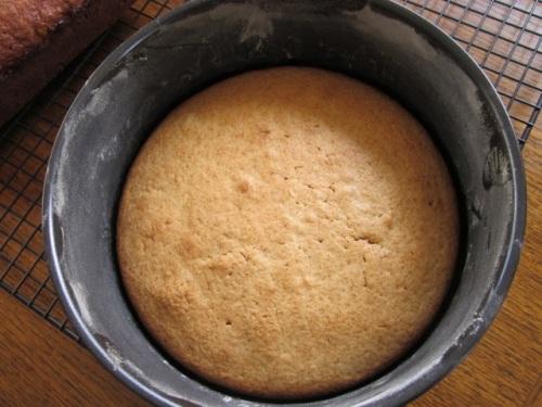 Cinnamon Tea Cake myfavouritepastime.com_8246