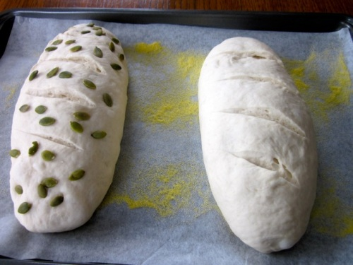 Easy Bread Recipe myfavouritepastime.com_8864