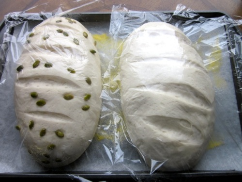 Easy Bread Recipe myfavouritepastime.com_8867