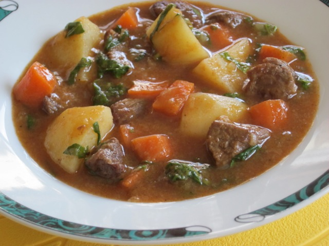 Beef Stew with White Wine myfavouritepastime.com_1761