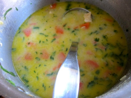 Hearty Chicken Soup myfavouritepastime.com_3595