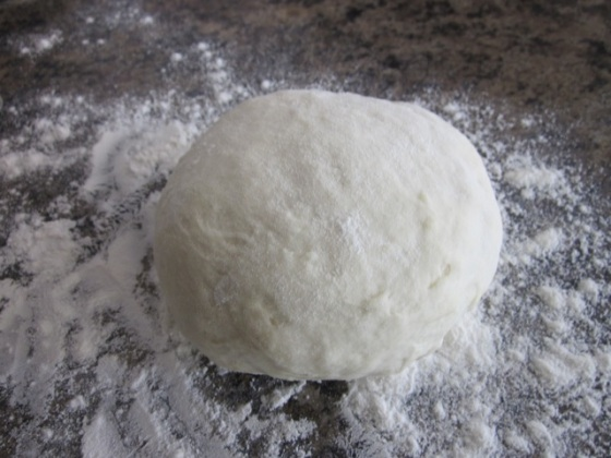 No-Knead Thin Crust Pizza Dough myfavouritepastime.com_3994