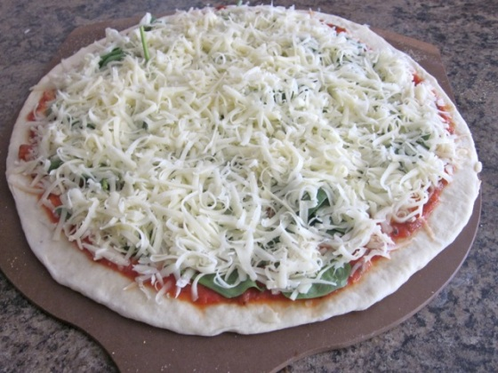 No-Knead Thin Crust Pizza Dough myfavouritepastime.com_4007