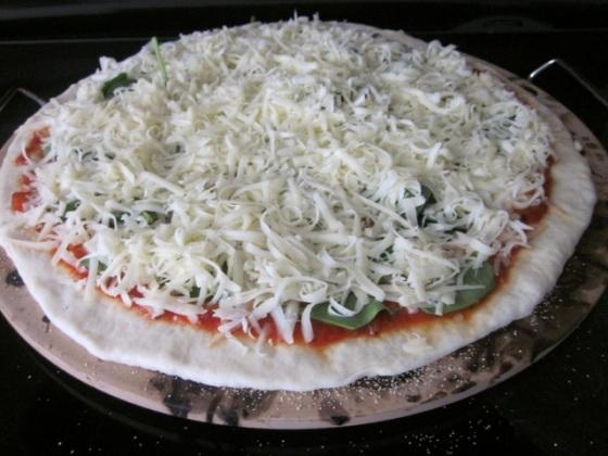 No-Knead Thin Crust Pizza Dough myfavouritepastime.com_4009