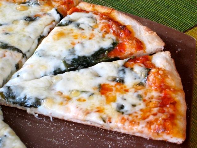 No-Knead Thin Crust Pizza Dough myfavouritepastime.com_4019