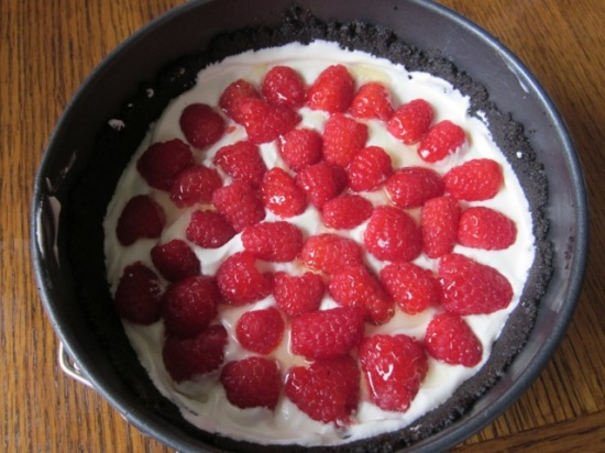 No-Bake Cheese Cake with Strawberries myfavouritepastime.com_5646