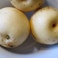 What is Asian Pear?