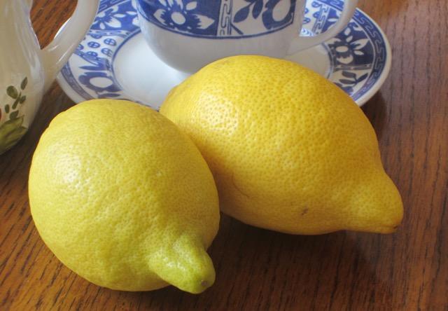 'Lisbon' Lemon myfavouritepastime.com_3671