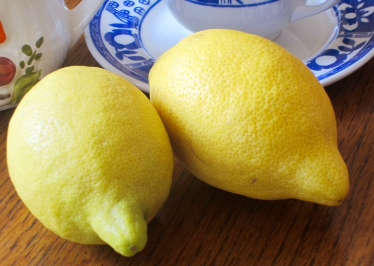 'Lisbon' Lemon myfavouritepastime.com