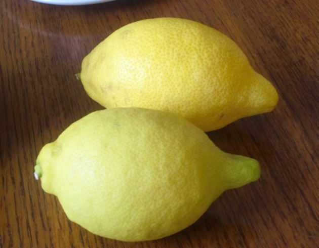 'Lisbon' Lemon myfavouritepastime.com_6135