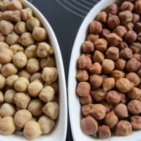 All you wanted to know about Chickpea