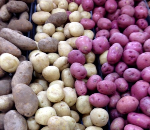 Potato (Solanum tuberosum) myfavouritepastime.com