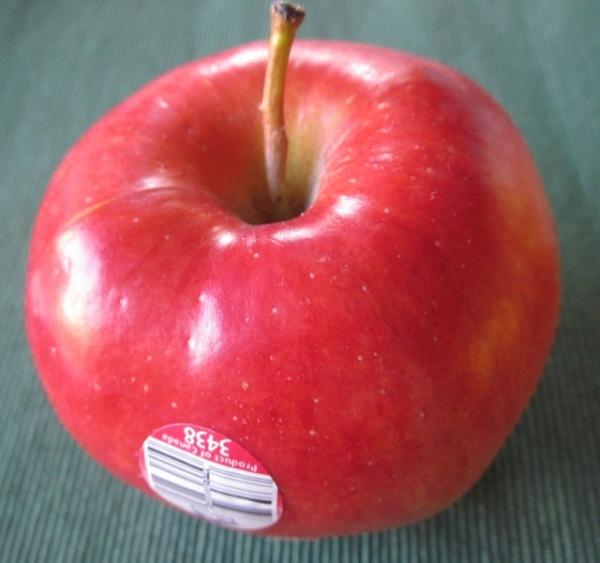Ambrosia Apple myfavouritepastime.com