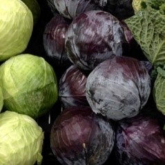 Cabbage myfavouritepastime.com