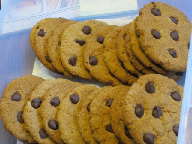 Chocolate Chip Gingernuts myfavouritepastime.com