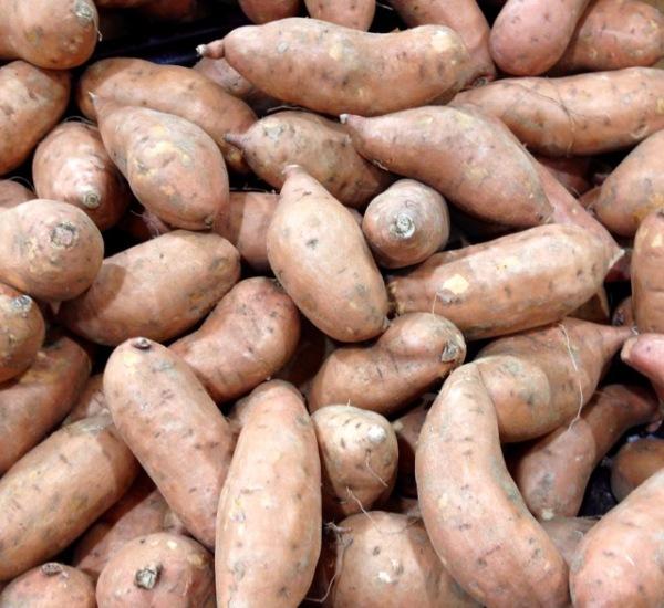 Sweet Potato myfavouritepastime.com