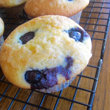 Classic Blueberry Muffins myfavouritepastime.com