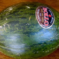 How do you know when a Piel de Sapo (Santa Claus Melon) is ripe?