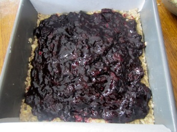Blueberry Oatmeal Cookie Bars myfavouritepastime.com