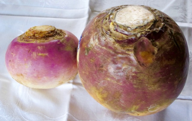 whats-the-difference-between-turnip-and-rutabaga_1570.jpg