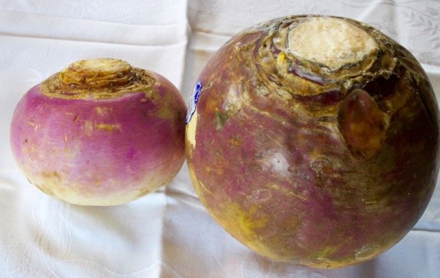 What Is The Difference Between Turnip And Rutabaga My