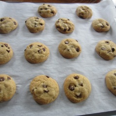 Chocolate Chip Cookies myfavouritepastime.com