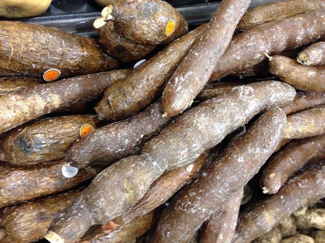 Cassava ( Manioc,Yucca Wax) myfavouritepastime.com