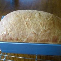 Classic White Bread Recipe myfavouritepastime.com
