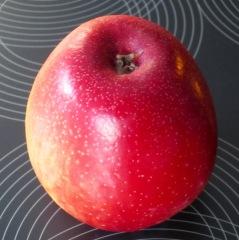 Sweet Tango Apple myfavouritepastime.com