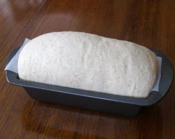 Easy Half Whole Wheat Bread myfavouritepastime.com